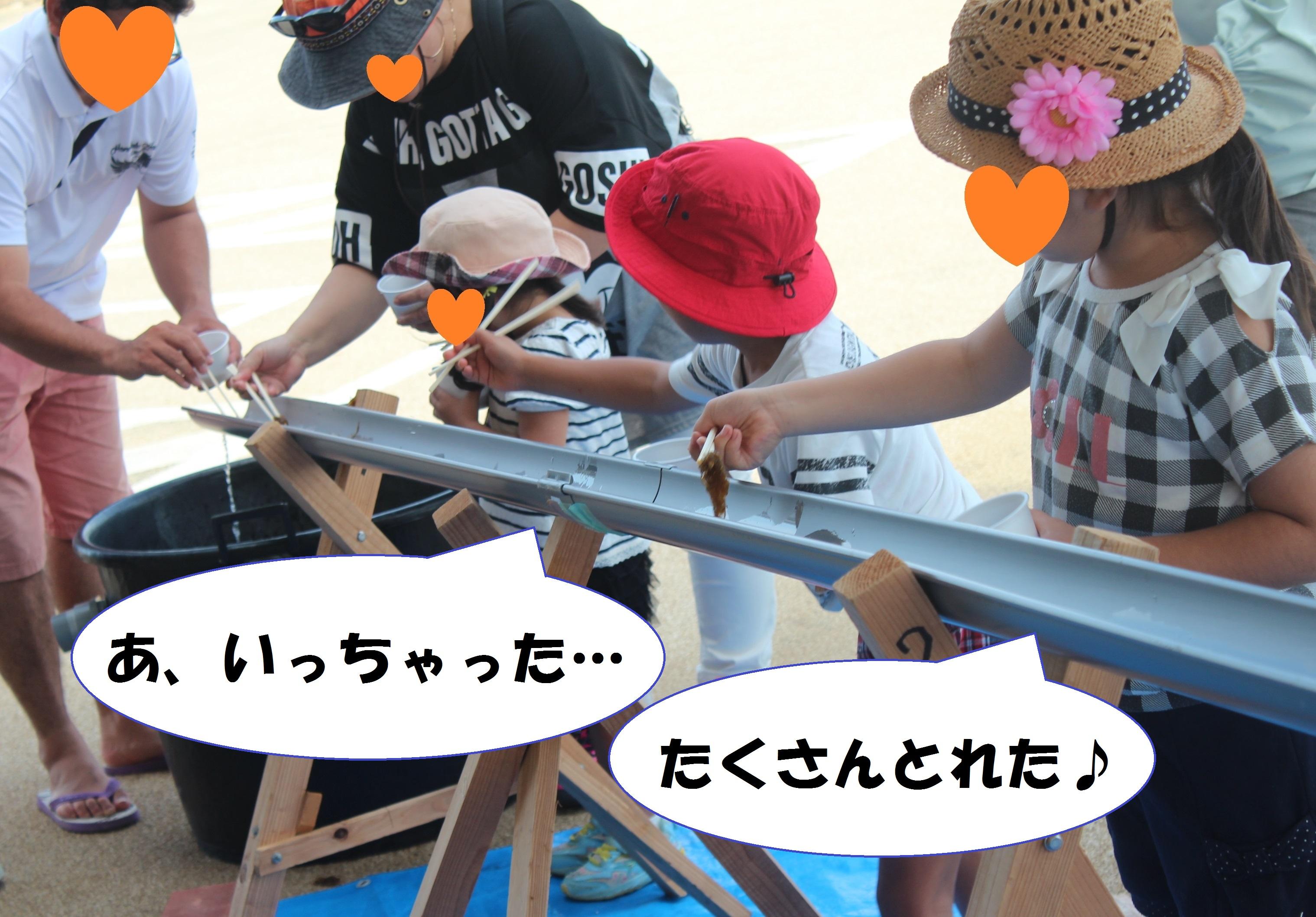 http://miyakojima-kaichukoen.com/blog/upload_images/IMG_2143.JPG