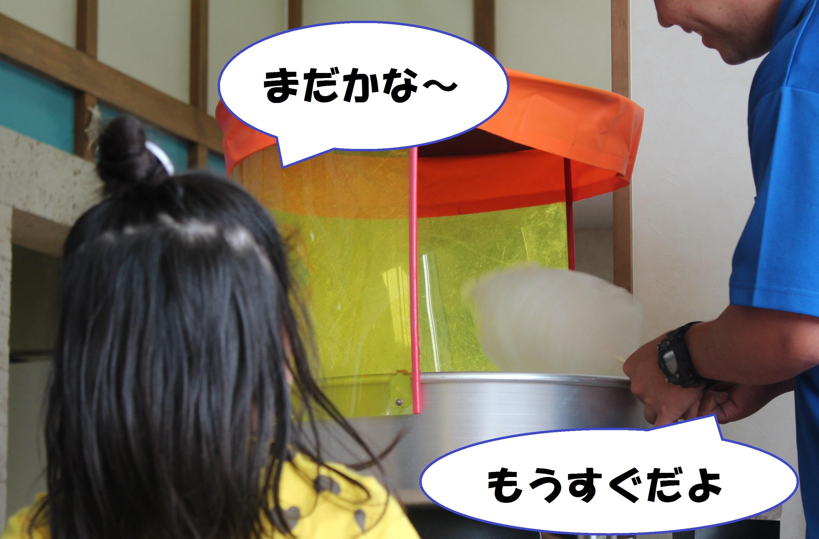 http://miyakojima-kaichukoen.com/blog/upload_images/IMG_2146.JPG