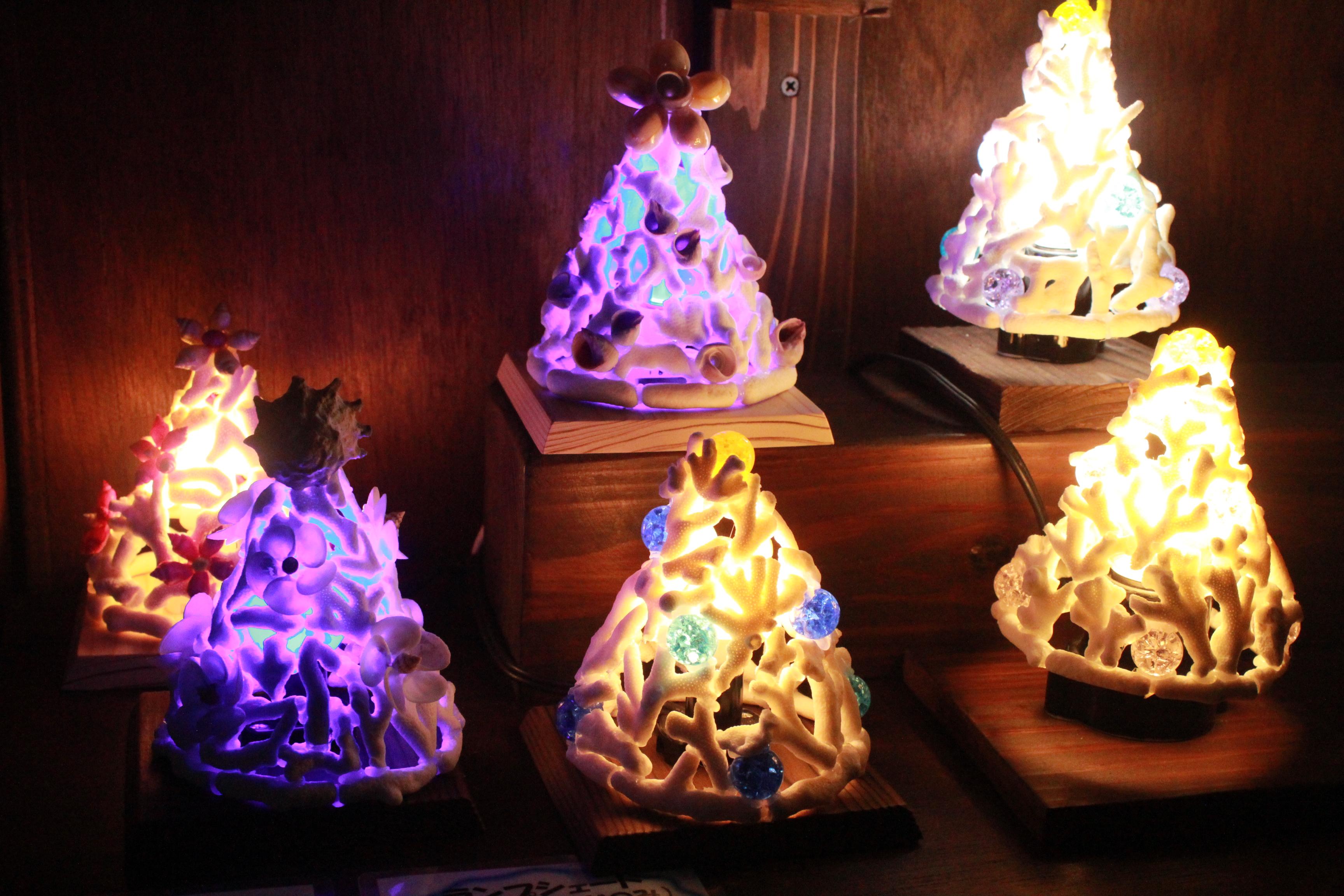 http://miyakojima-kaichukoen.com/blog/upload_images/IMG_2487.JPG