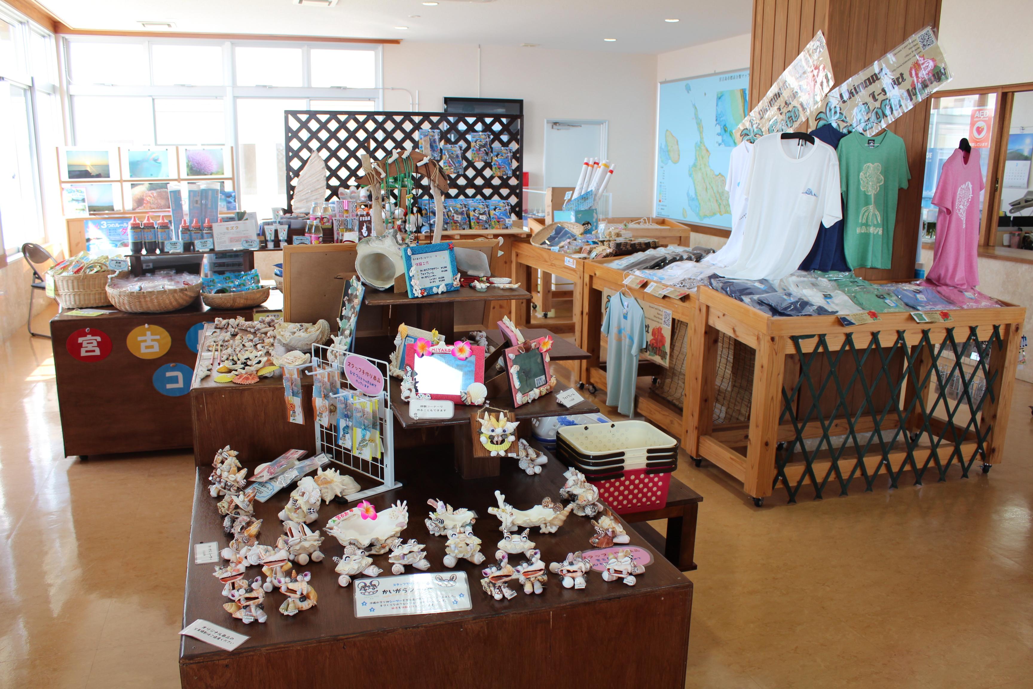 http://miyakojima-kaichukoen.com/blog/upload_images/IMG_9433.JPG