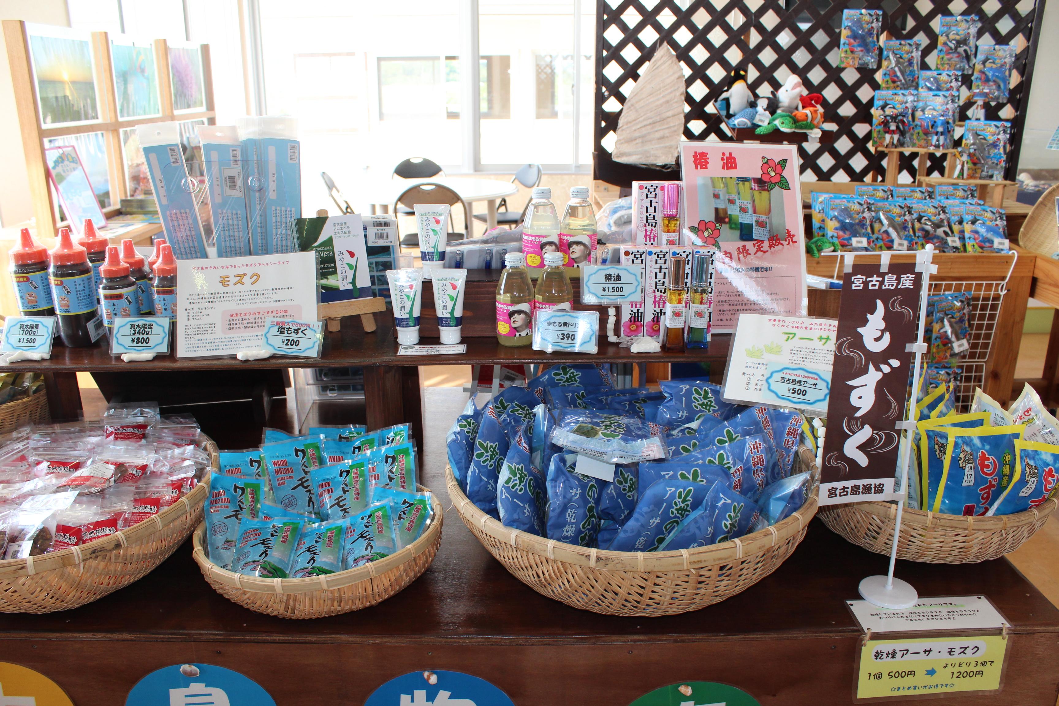 http://miyakojima-kaichukoen.com/blog/upload_images/IMG_9443.JPG