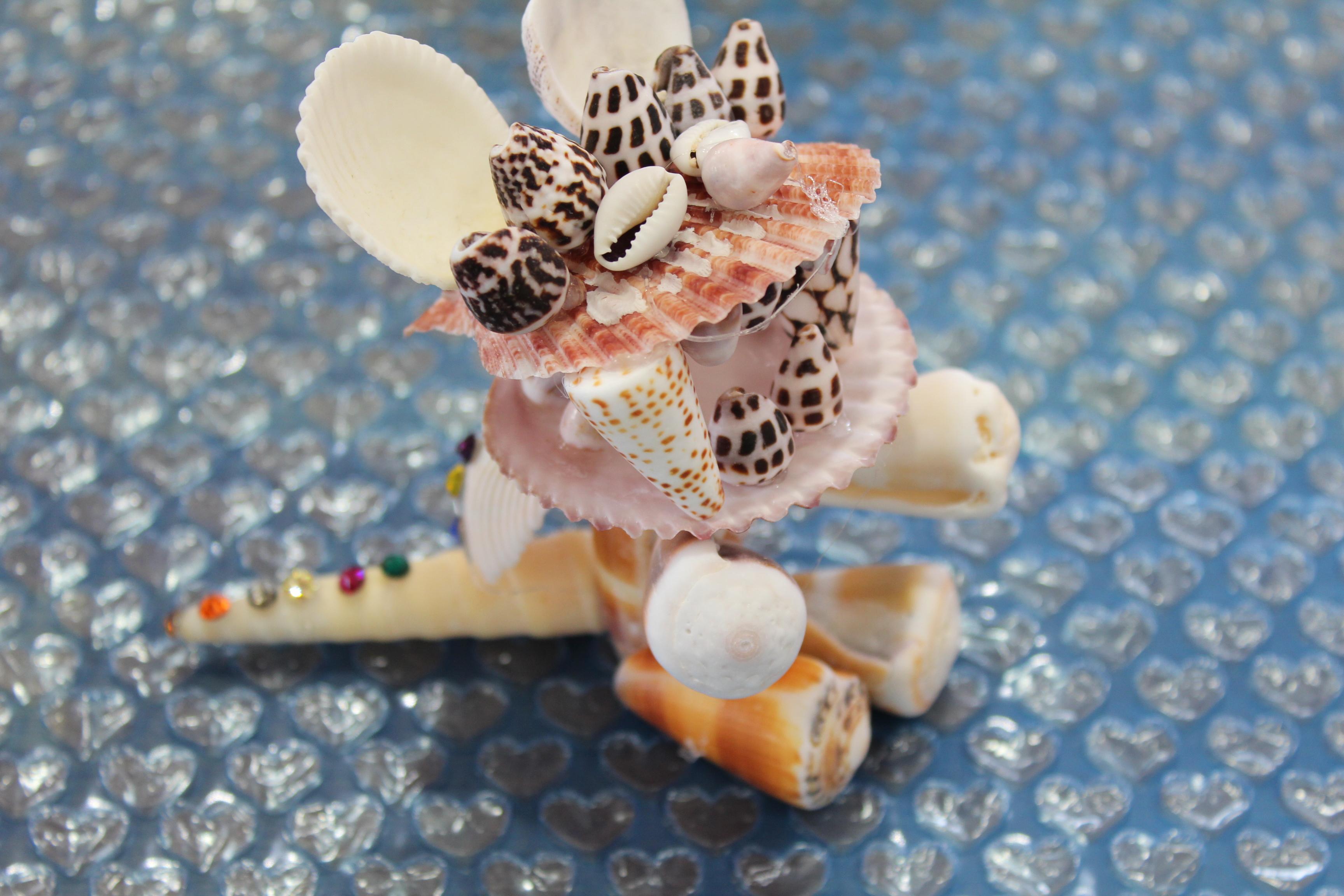 http://miyakojima-kaichukoen.com/blog/upload_images/IMG_9462.JPG