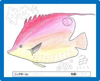 http://miyakojima-kaichukoen.com/blog/upload_images/miho.png